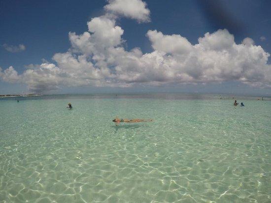 Coral Gardens on Grace Bay: Lugar maravilhoso, mar transparente, snorkel espetacular, mar manso, sol incrível, recomendo a t