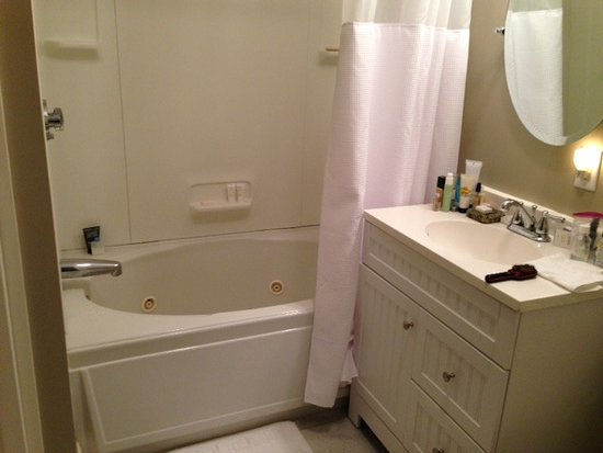 The Hotel Marblehead: Modern Toilette, Sink and Combination Shower & Whirlpool Tub