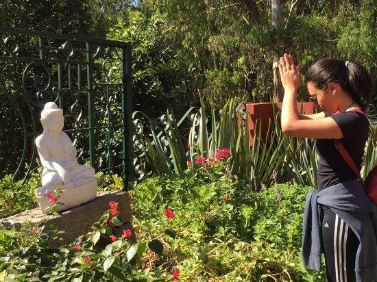 Cotia, SP: Uma jovem reverenciando Buda
