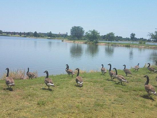 Boomer Lake Park