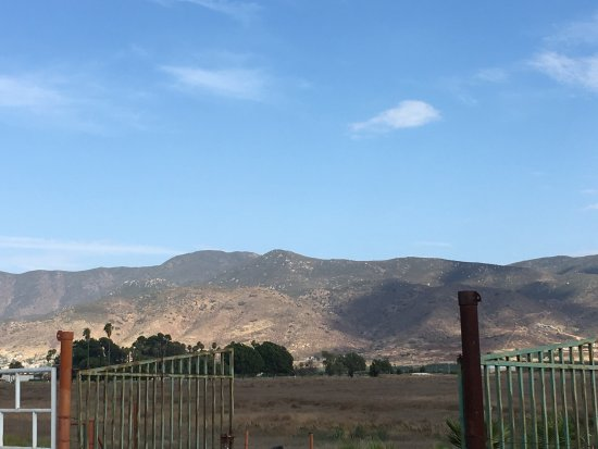 Valle de Guadalupe, Mexico: photo1.jpg