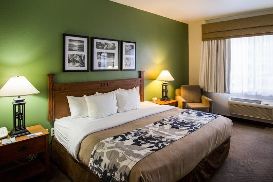 Sleep Inn & Suites Conference Center: Guest Room