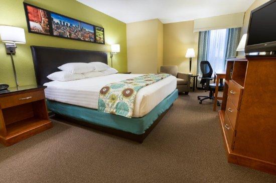 The Woodlands, Техас: Deluxe King Guestroom