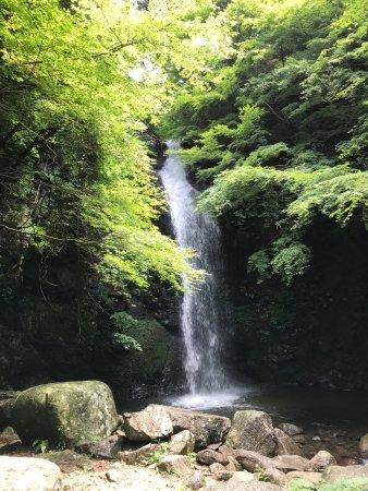 Shirafuji Falls: マイナスイオンをたっぷり浴びて、癒されます。