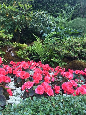 Butchart Gardens: photo1.jpg