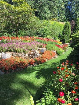 Butchart Gardens: photo3.jpg