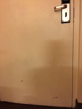Clarion Inn & Suites: photo3.jpg