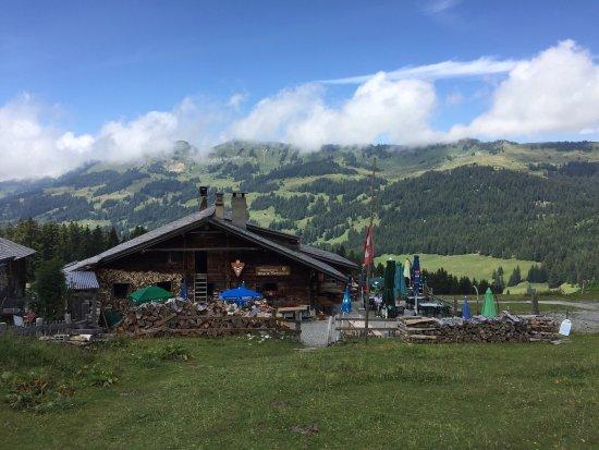 Gryon, Switzerland: Lekker eten in een authentieke refuge