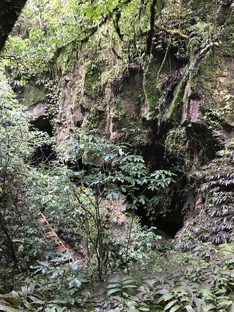 Te Kuiti, Новая Зеландия: entrance of the cave