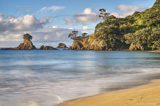 Whangaroa, New Zealand: Tauranga Bay