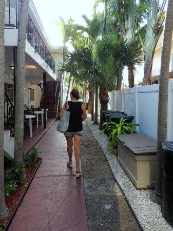 The beach corner boutique hotel apartments updated 2018 prices condominium reviews miami beach fl tripadvisor