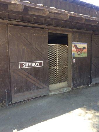 Solvang, كاليفورنيا: Flag Is Up Farms