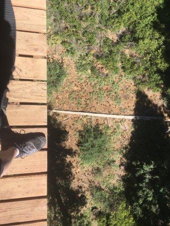 Tahoe City, CA: Looking down..down..down...
