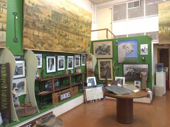 History of Ambos Nogales