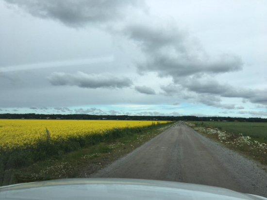 Vaasa, Finlândia: Meteoriihen halkaisija jopa 6,6km