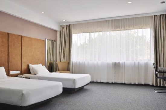 Tai Ming Hotel: Superior Twin Room