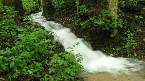 Jasov, Słowacja: Teplický les