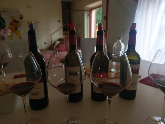 Podere Sapaio: Tasting in progress