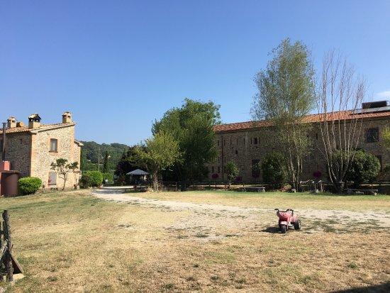 Montone, Italy: photo3.jpg