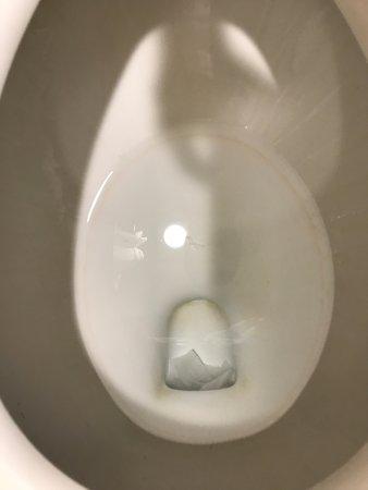 Best Western Plus Burley Inn & Convention Center: Dirty toilet bowl
