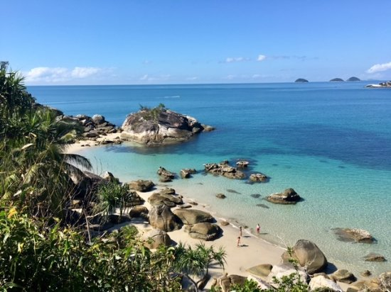 Bedarra Island Picture