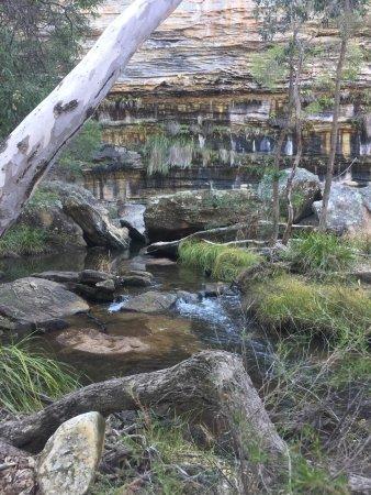Mudgee, Australia: photo8.jpg