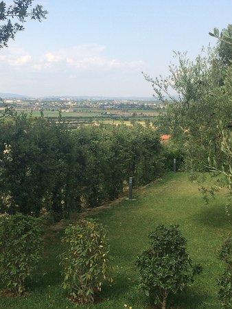 Castiglion Fiorentino, Italien: photo1.jpg