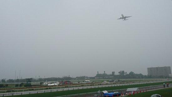Hakodate Horse Racetrack : 函館空港へ向かう飛行機