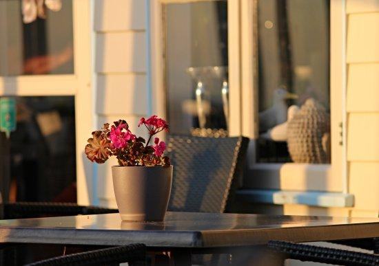 Callantsoog, Países Bajos: Abendlicht auf der Aussenterrasse