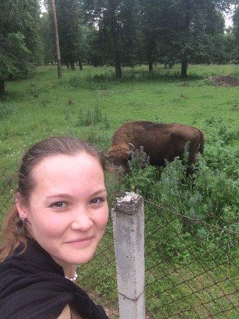 Serpukhov, Russland: самая злая самка за этой оградой