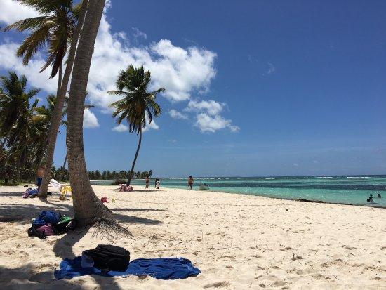 Bayahibe, Dominican Republic: photo0.jpg