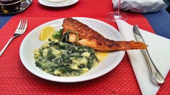 Ston, Chorwacja: 冷凍的魚 加上奇怪的蔬菜燉飯