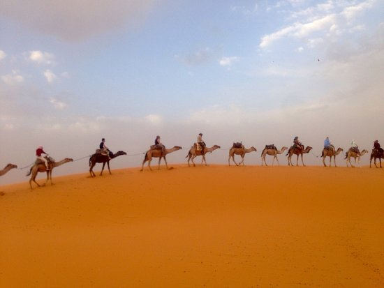 Discover Morocco Tours: photo0.jpg