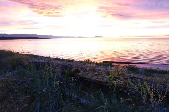 Qualicum Beach Inn: Sunset