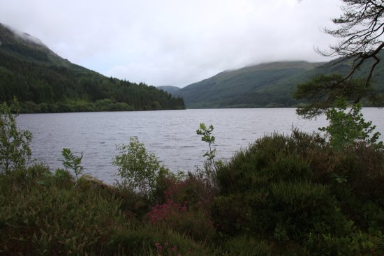 Loch Eck, UK: IMG_1785_large.jpg