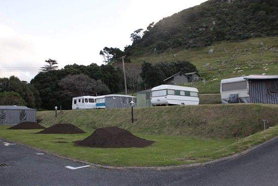 Mount Maunganui, Nueva Zelanda: FB_IMG_1500893450452_large.jpg