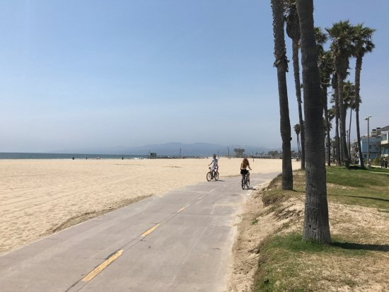 Cycle Path Around Venice Beach Picture Of 26 Mile Bike Path