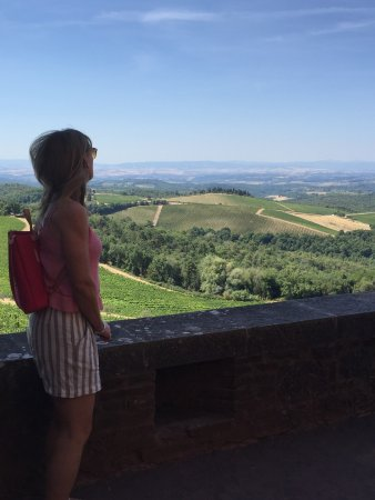 Gaiole in Chianti, Italy: The view