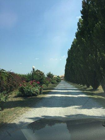 Fenil del Turco, Italy: photo0.jpg