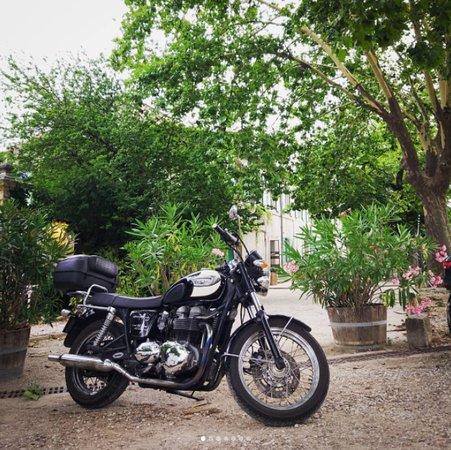 Сен-Реми-де-Прованс, Франция: Bonnie at hotel near Lauret, Herault