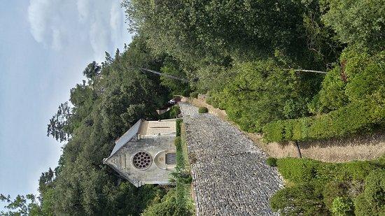 Vézac, Frankrig: 20170627_134221_Richtone(HDR)_large.jpg