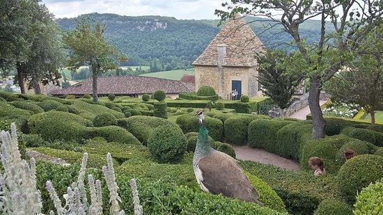Vézac, Frankrig: 20170627_161052_Richtone(HDR)_large.jpg