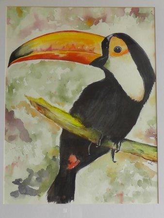 Bampton, UK: The Toucan.