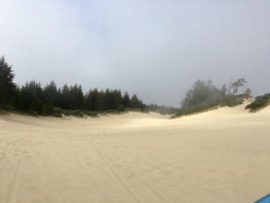 Reedsport, Oregón: Oregon Dunes