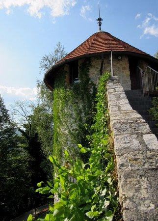 Lasko, Slovenia: Looking right