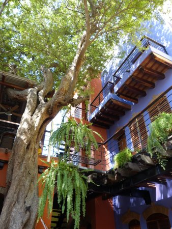 Casa de Isabella - a Kali Hotel: inside casa de isabella