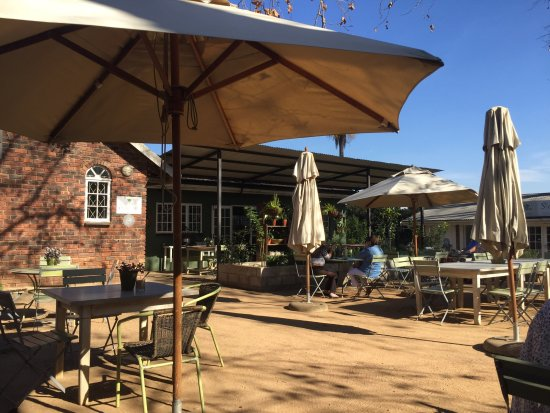 Hillcrest, South Africa: Sun-drenched early afternoon out-doors at Two Acres