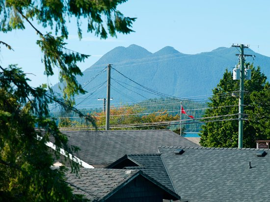Tofino Ospray Lodge: The view from our Deluxe Room and Two Bedroom Suite