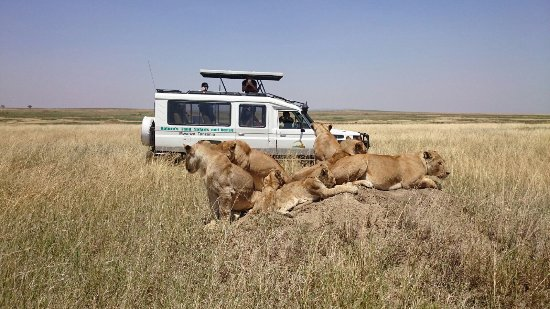 Nature's Land Safaris & Rentals Ltd