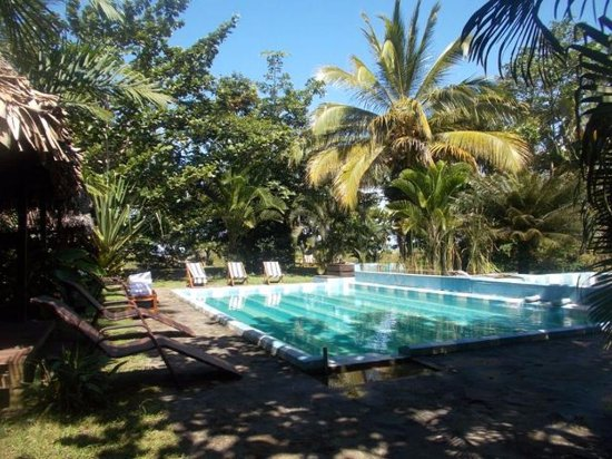 L 39 hippocampe prices guesthouse reviews maroantsetra Piscine biologique